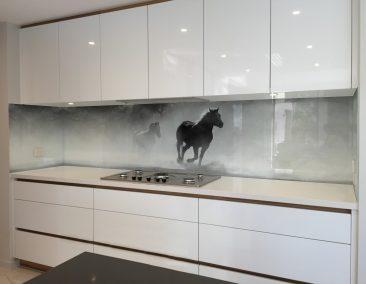 Enigmatic Horses